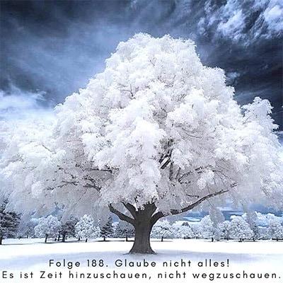 Folge 188 - Glaube nicht alles! Es ist Zeit, hinzuschauen, nicht wegzuschauen.
