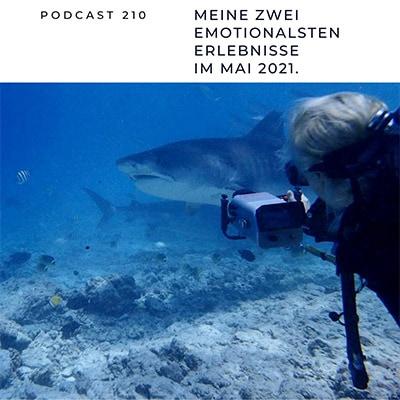 """Folge 210 - Meine zwei emotionalsten Erlebnisse im Mai 2021: Tigerhai-Tauchen & """"Energize your life"""""""